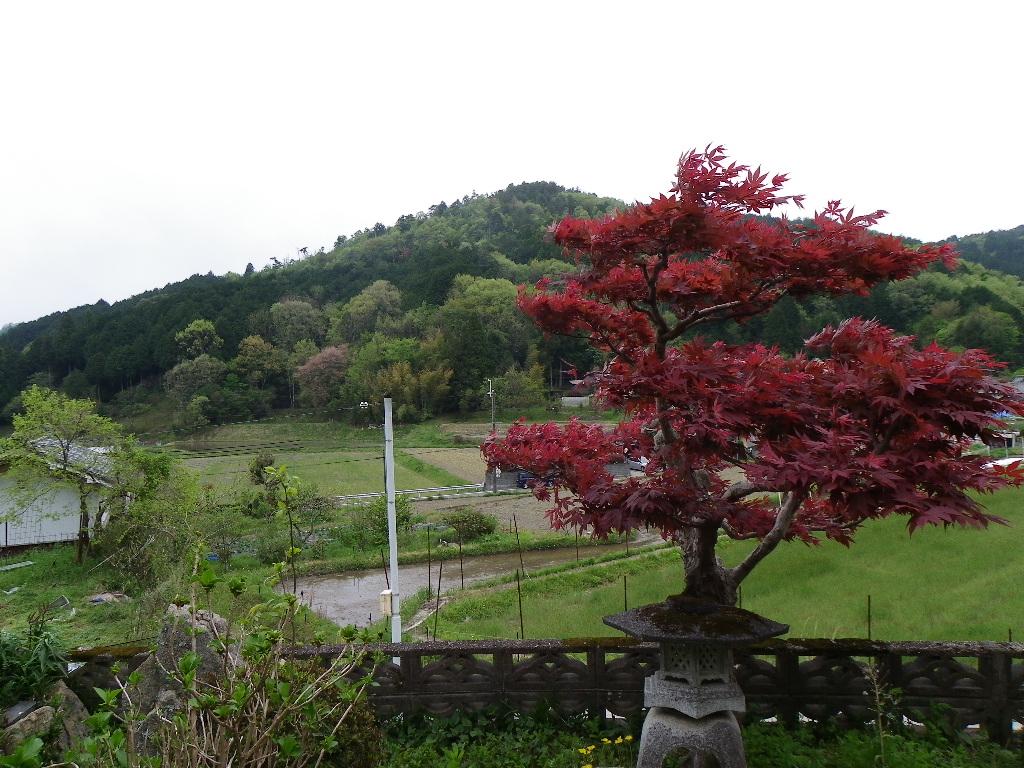 ◎前面田舎風景の住宅物件、ひな壇で眺望良好