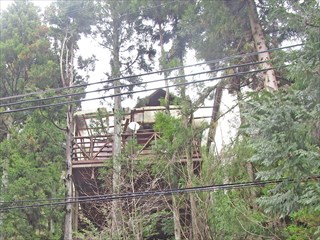 ◆三田藍本高原の高台格安田舎家◆ ◎三田藍本高原の高台格安田舎家◎
