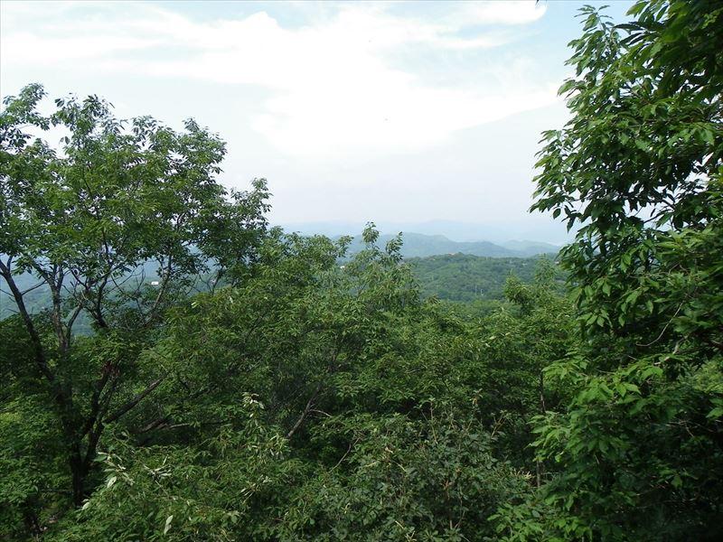 ◆森林の中のウディな内外観の田舎物件、薪ストーブ付き◆  ◎森林の中のウディな内外観の田舎物件、薪ストーブ付き◎